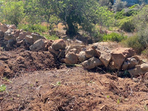 Pedras jardim para recolha