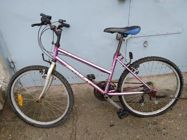 Tanio rower z Niemiec marki Amulet model Simba