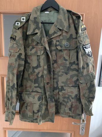 Mundur wojskowy 2 komplety na 172cm + kurtka XL