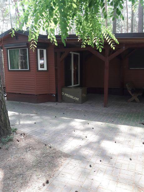 Wynajmę domek w Boszkowie z własnym podwórkiem pudelkowo