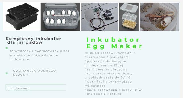 Inkubator jaj gadów Egg Maker - kompletny zestaw