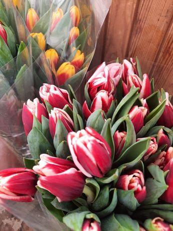 ОПТ квіти. Троянда.Гвоздика. ТЮЛЬПАН. Гіацинт