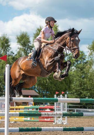 Trening i zajeżdżanie koni