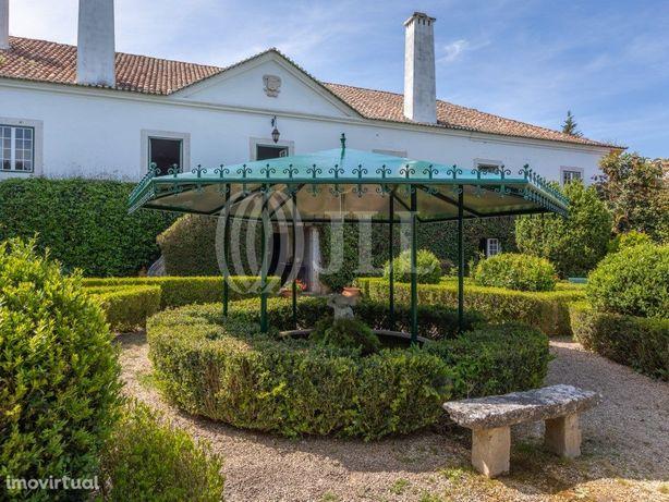 Quinta com 8 ha, piscina, área cultivada, em Pinheiro de ...