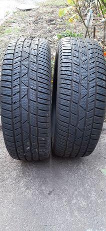Пара зимових шин Continental TS 830P 205/55R16 8мм