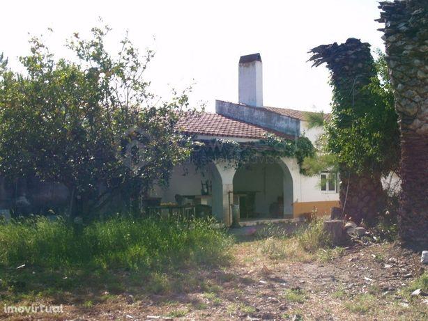 Casa de Campo - Cartaxo/Azambuja