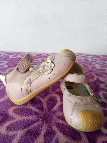 Sapatos Chicco Tam 22