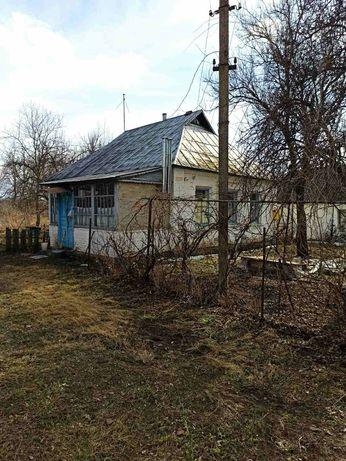 Жилий будиночок з подвір'ям