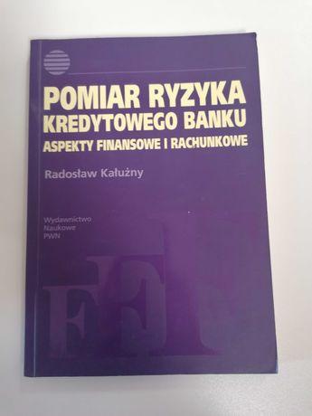 Pomiar Ryzyka Kredytowego Banku - Aspekty Finansowe i Rachunkowe