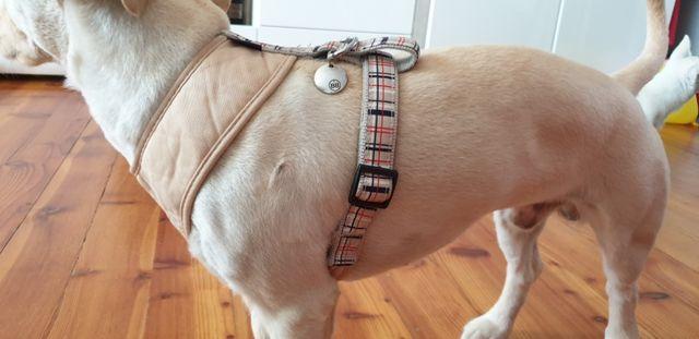 Szelki dla psa BOBBY.FR miękkie bezpieczne L