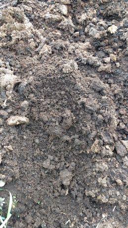 Torf wysoki ph 4.6 dla ogrodnictwa szkółek borówka