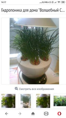 """Гидропоника для дома """"Волшебный Cад"""""""