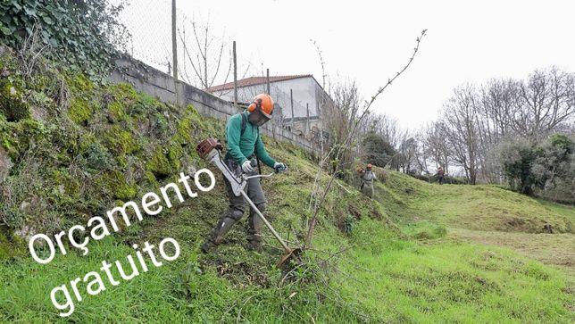Serviços de Limpeza de terrenos, jardins, quintas etc