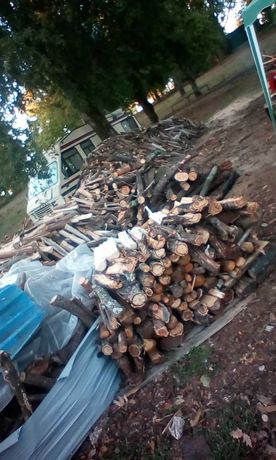 Lenha para lareira seca. Firewood dry.