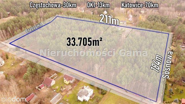 Działka Leśna – 33 705M2 – Masłońskie Ostrów