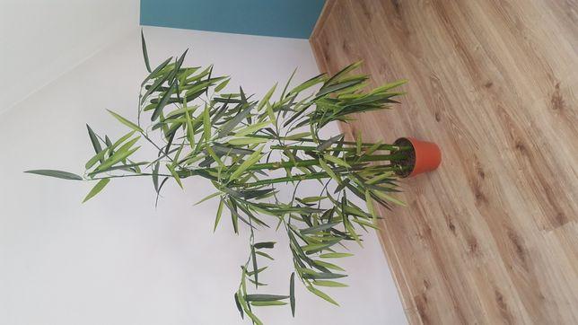 Bambus sztuczny wymiary 130wys i 90szer