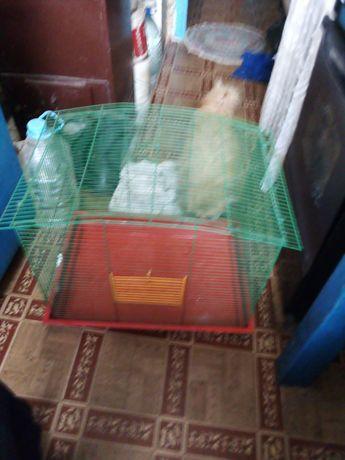 Клетку продам для гризунов