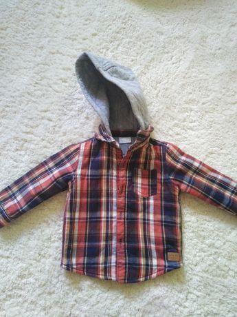 Kurteczka bluza dresowa chłopięca 6-9 miesięcy