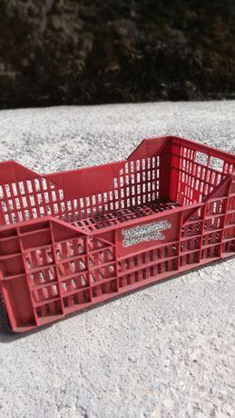 Lote de Caixas de Plástico