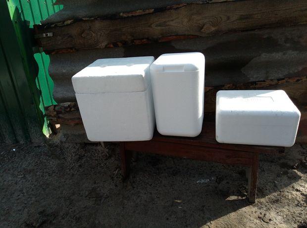 Термобокс, пенопластовый ящик, термоконтейнер, холодильник.