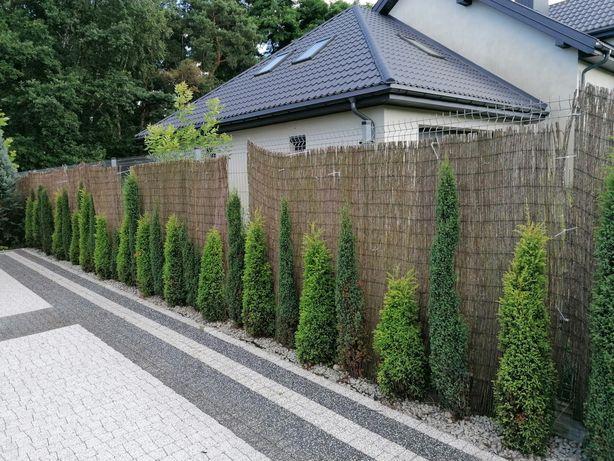 Mata trzcinowa osłona ogrodzenie