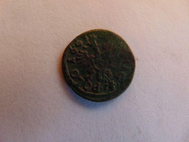 Polska 1 szeląg, 1663