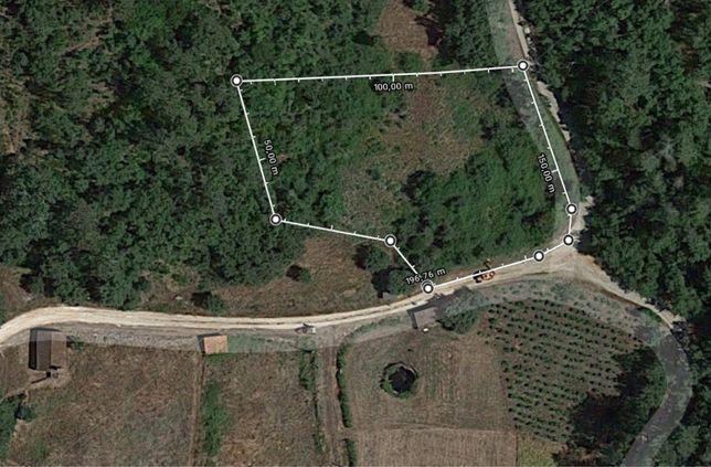 Terreno agrícola em S. Vicente - Ansião