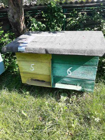 Вулики без бджолів,стояки