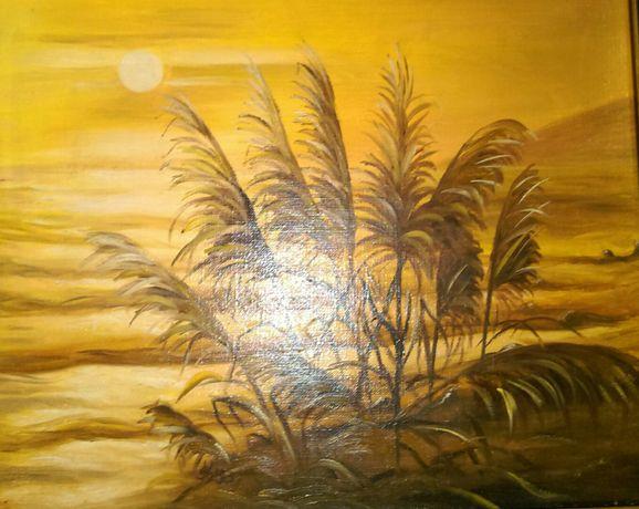 obraz na płótnie; 46 x 38cm