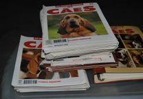 """Coleção completa fasciculos """"os nossos amigos cães"""