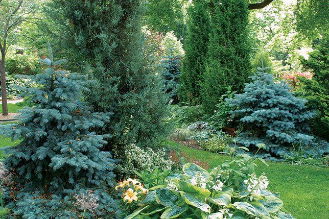 Благоустройство и озеленение ,Ландшафтный дизайн.