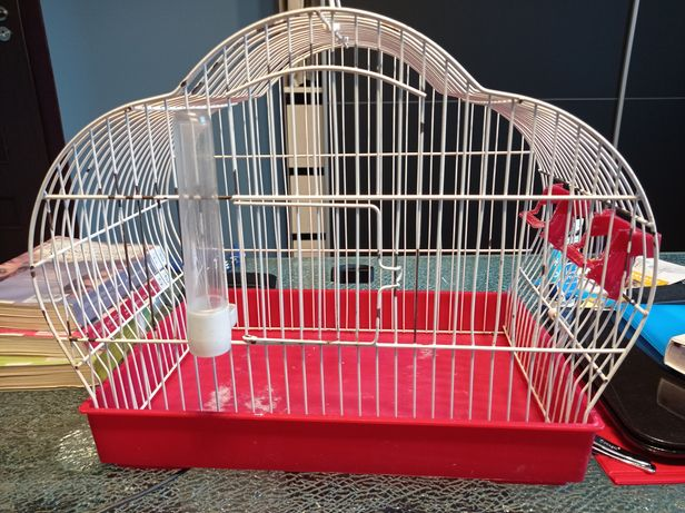 Klatka dla kanarka/papugi falistej
