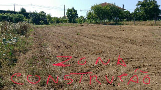 Terreno composto de área de construção e eucaliptal e terreno de culti