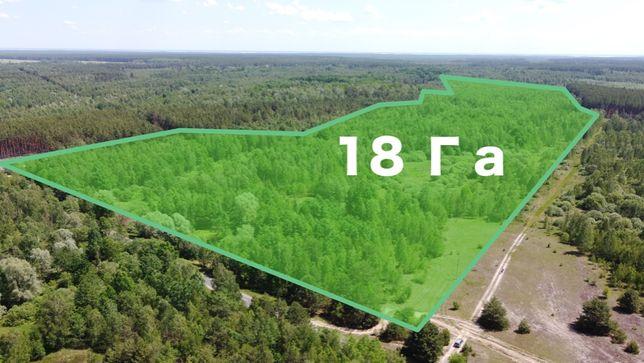 18 Га: Продажа земельного участка Киевская область, 50 км до Киева