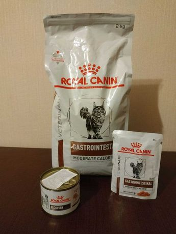 Корм для котів Royal canin, Gastrointestinal(Moderate calorie) та інш.