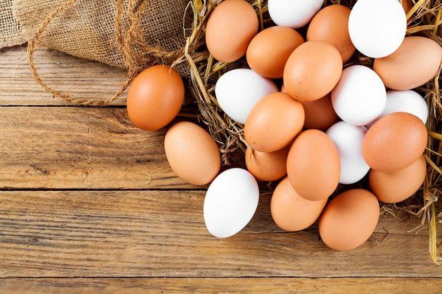 Jajka od kur własnego chowu