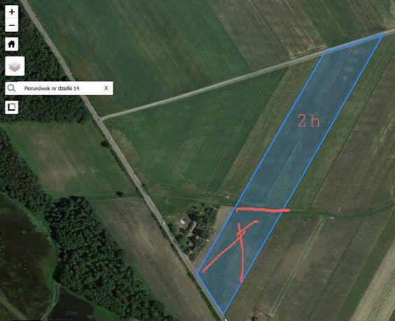 Działka siedliskowo - rolna .Z warunkiem zabudowy