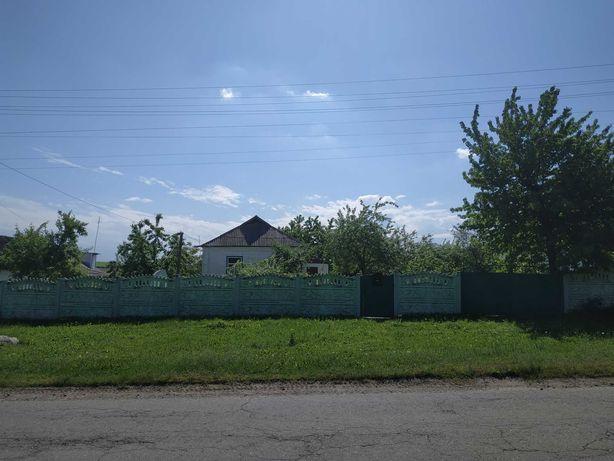 Будинок з великим подвір'ям та городом