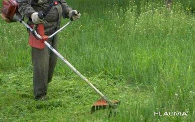 Покос травы бензокосой.