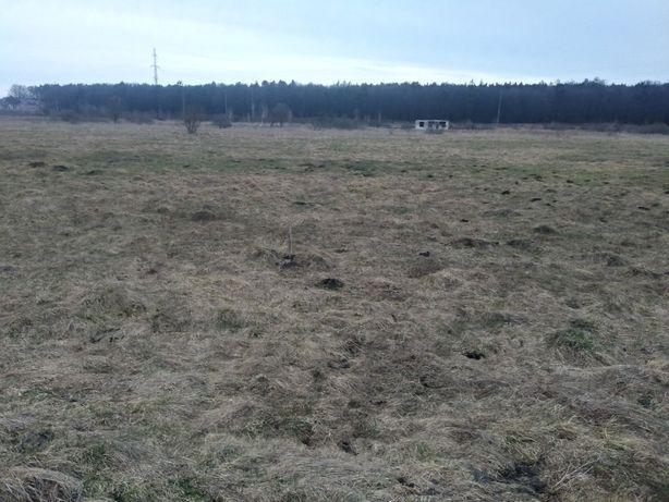 Продам земельну ділянку с.Рясна Руська( ціна за всю ділянку)