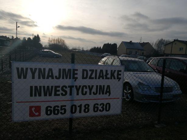 Wynajmę działkę, teren pod inwestycje przy głównej ulicy w Myszkowie