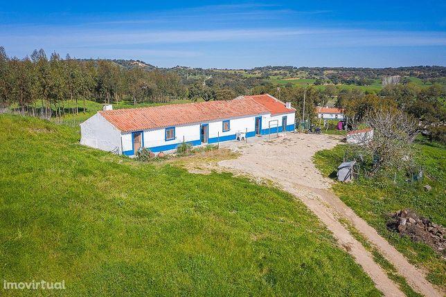 Propriedade no Monte de Bodel, São Domingos da Serra