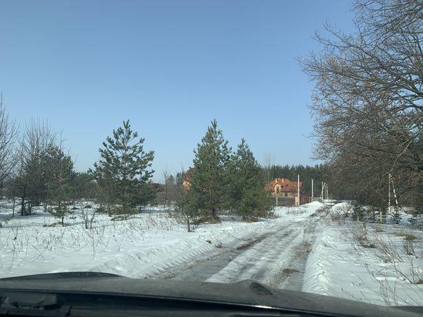 Продажа участка возле леса с ёлками Здоровка