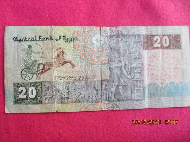 20 фунтов Египет