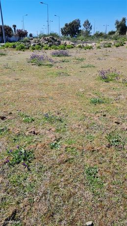 Lote de Terreno  Venda em Alcains,Castelo Branco