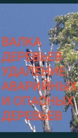 Спил Обрезка Удаление деревьев Разчистка уборка участка