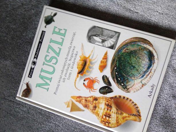 Książka muszle o muszlach album