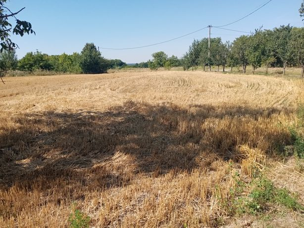 Продам земельну ділянку 20 соток