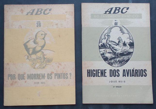 higiene dos aviários / José reis