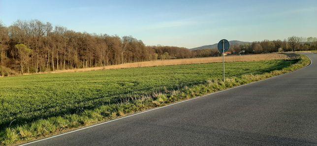 atrakcyjna działka zagrodowa 1,12 hektara